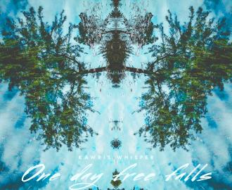 One_day_free_falls_2_1425x1425